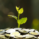 MŽP poskytuje finanční prostředky